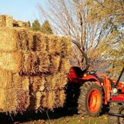 Straw on Wagon